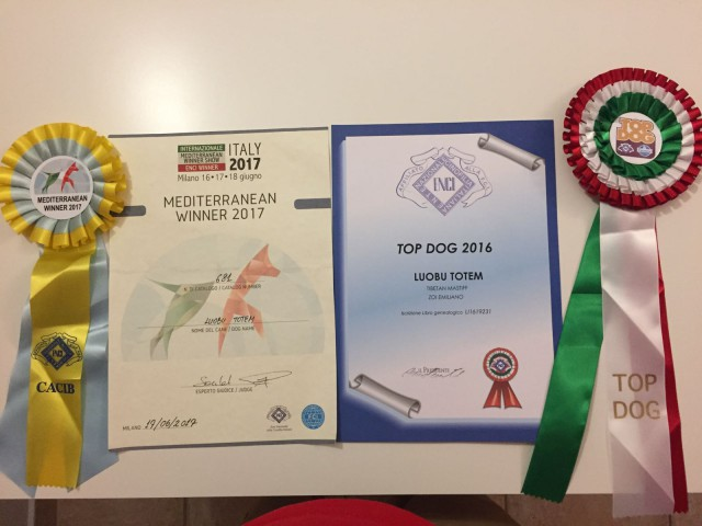 Luobu campionessa italiana e TOP DOG 2016