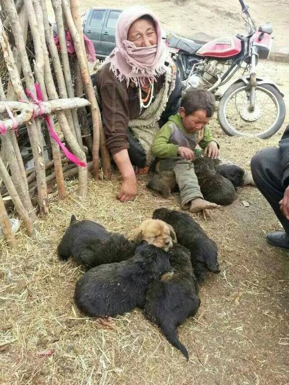 Selezione tradizionale tibetana